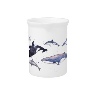 Whales and dolphins of Scotland Pitchers