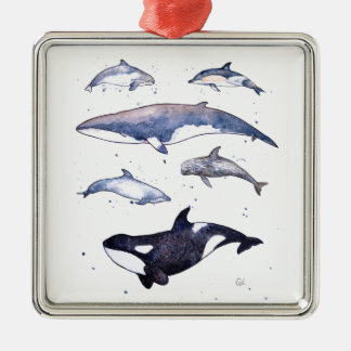 Whales and Dolphins of Scotland Silver-Colored Square Decoration