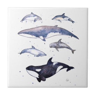 Whales and Dolphins of Scotland Small Square Tile