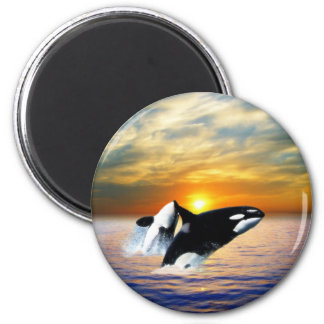 Whales at sunset 6 cm round magnet