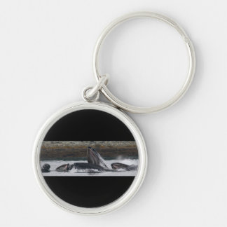 whales Silver-Colored round key ring