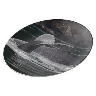 whales porcelain plates