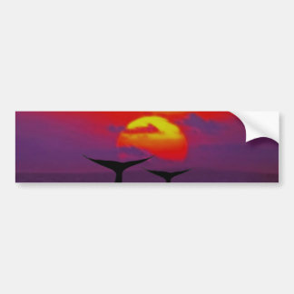 Whales tail at sunset bumper sticker