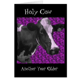 What A Cow- Happy Birthday Card