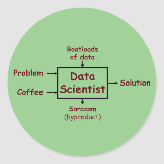 What a data scientist does all day classic round sticker