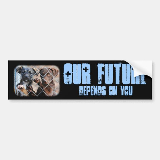 What About Us?  Bumper Sticker