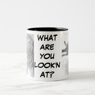 WHAT ARE YOU LOOK'N AT? MUG