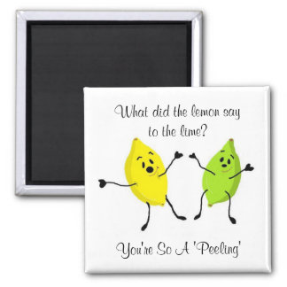 What did the lemon say to the lime... square magnet