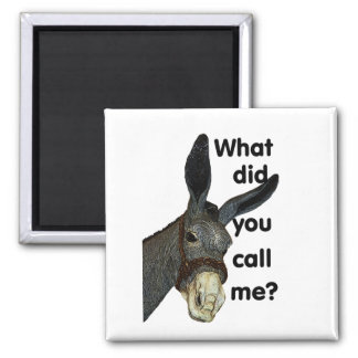 What did you call me? square magnet
