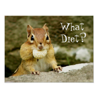 What Diet? Chipmunk Poster