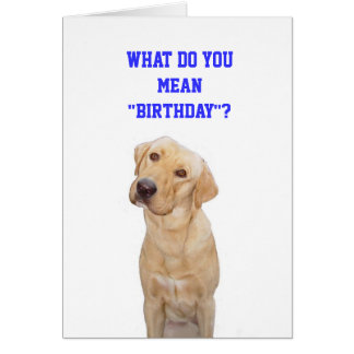 """What do you mean""""birthday""""? greeting card"""
