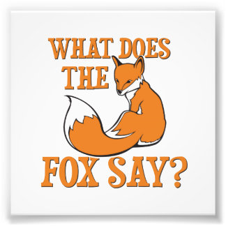What Does The Fox Say? Photo Print