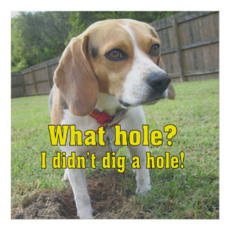 What hole? Funny Beagle Poster