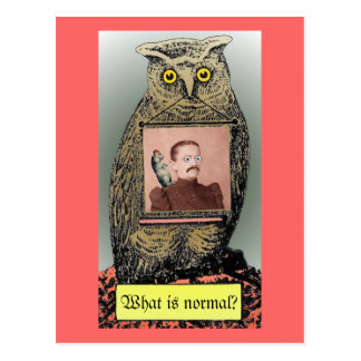 """What is  normal?"" Postcard"