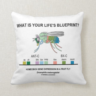 What Is Your Life's Blueprint? (Homeobox Genes) Throw Pillow