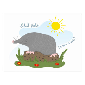 What mole do you want? postcard