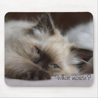 What mouse, mouse pad