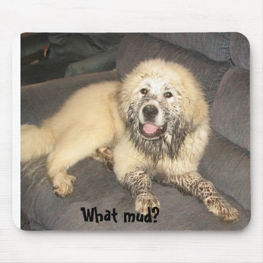 What Mud? Mouse Mat