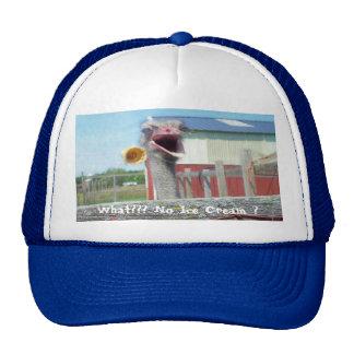 What No Ice Cream - Ostrich Farm Cap
