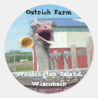 What No Ice Cream - Ostrich Farm Classic Round Sticker