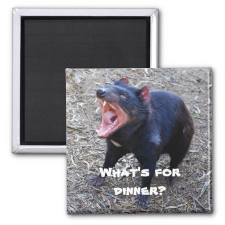 What s for Dinner Tasmanian Devil Magnet