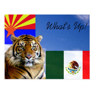 What s Up_ Post Card
