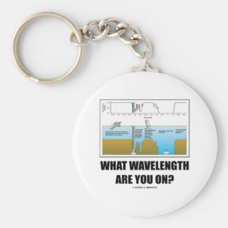 What Wavelength Are You On? (Electromagnetism) Basic Round Button Key Ring