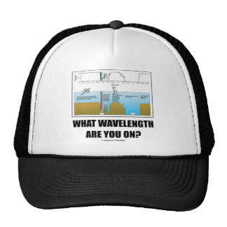What Wavelength Are You On? (Electromagnetism) Cap