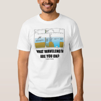 What Wavelength Are You On? (Electromagnetism) Shirt