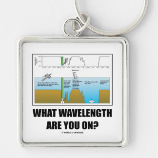 What Wavelength Are You On? (Electromagnetism) Silver-Colored Square Key Ring