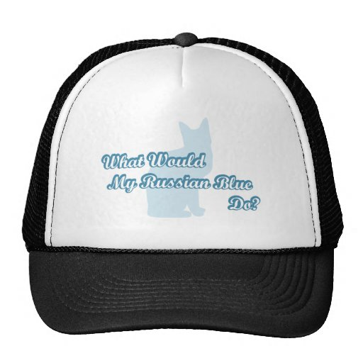 What would my Russian Blue do? Mesh Hat