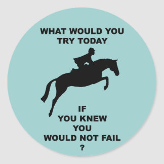 What Would You Do...Hunter Jumper Classic Round Sticker
