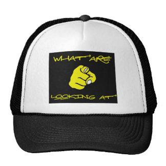 whatareyoulookingat.jpg cap