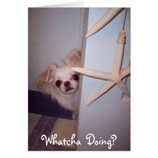 Whatcha Doing Hello Puppy? Card