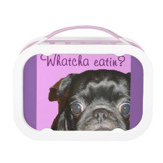 Whatcha Eatin Black and Fawn Pug Lunchbox