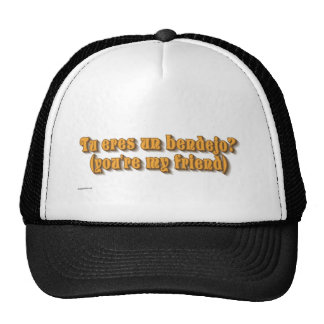 whatever mesh hats