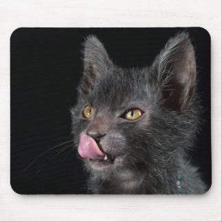 What's For Dinner? Mousepads