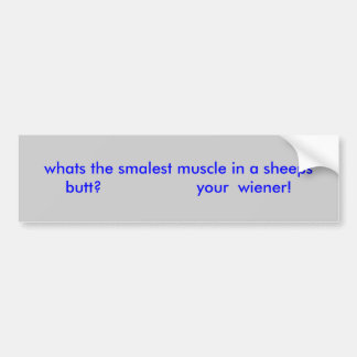 whats the smalest muscle in a sheeps butt?     ... bumper sticker