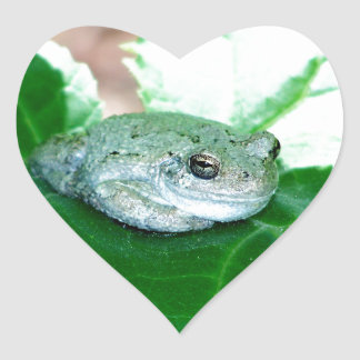 What's Up, Tree Frog Heart Stickers