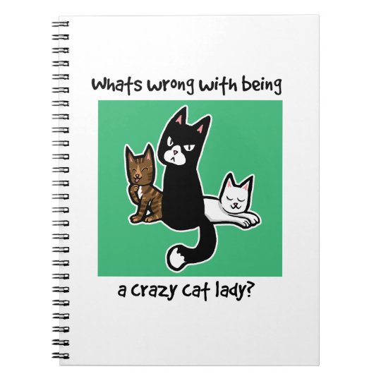 Whats wrong with being a crazy cat lady