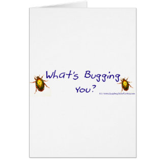 WhatsBuggingYouBumperSticker Card
