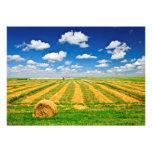 Wheat farm field at harvest card
