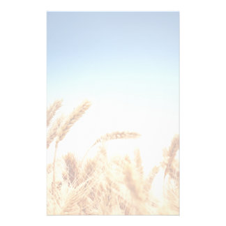Wheat field against blue sky stationery