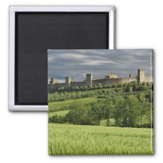 Wheat field and distant Monteriggioni, in the Square Magnet
