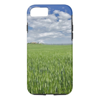 Wheat field and drive lined by stately cypress iPhone 8/7 case