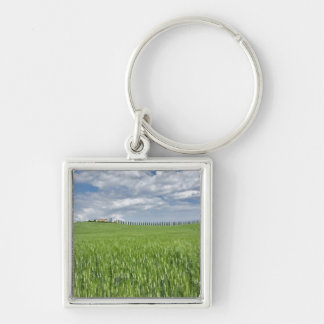 Wheat field and drive lined by stately cypress Silver-Colored square key ring