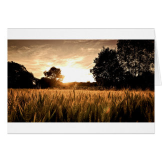 WHEAT FIELD CARD