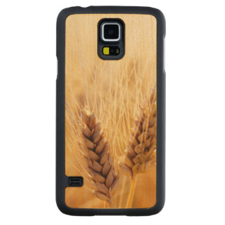 Wheat field carved maple galaxy s5 case