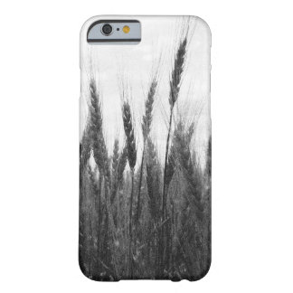 Wheat Field iPhone or Other Type Phone Case Barely There iPhone 6 Case
