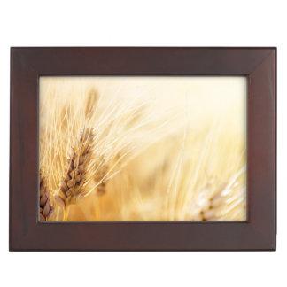 Wheat field memory boxes